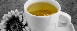 The Natural medicinal magic of Green Tea